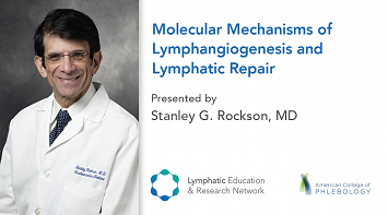 Molecular Mechanisms of Lymphangiogenesis and Lymphatic Repair thumbnail Photo